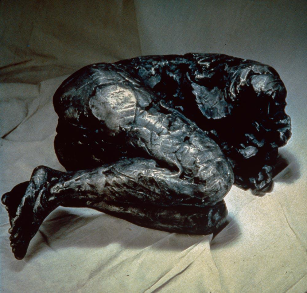 "Untitled (Curled Figure) 1993. Aluminum. 15 x 35 x 24"". Darrin Hallowell"