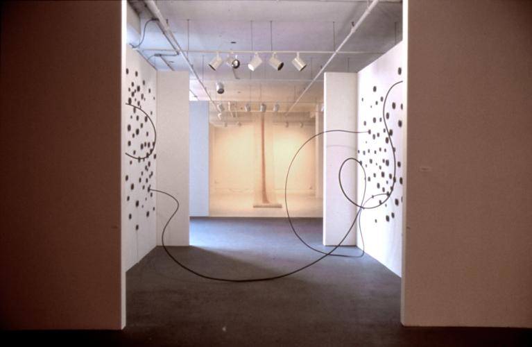 Untitled (Funnel Chase Installation). 2001. Copper. Dimensions variable. View of installation at The School of The Art Institute Jackson Street Gallery. Darrin Hallowell