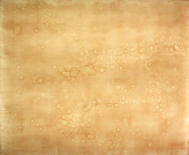 Particles (Hokusai). 2006. Artists blood, resin. 29 x 35 x 3