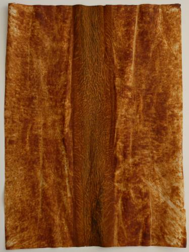Untitled (Path). 2009. Iron oxide on paper. 23½ x 18