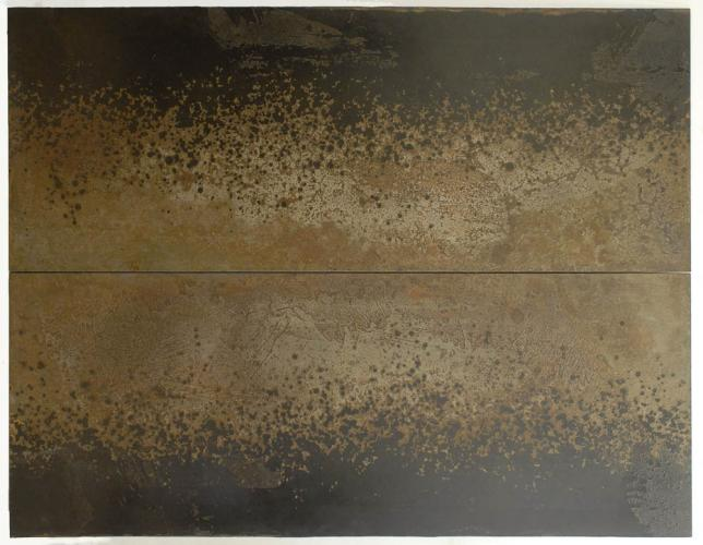 Iron Bloom (Reverse), Darrin Hallowell, 2014