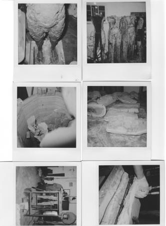 Two Are Halves of One. 2001. In progress polaroids, mold making and staging figures. Darrin Hallowell