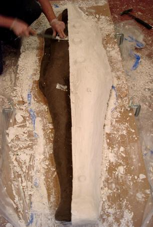 Primary Vessels. 2005. Process Image 2. Half of mold removed.