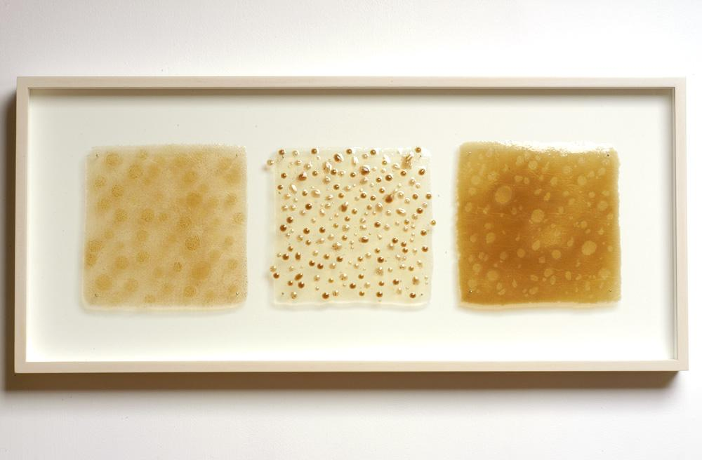 "Particles (Triptych). 2005. Artists blood, resin. 13 x 32 x 3"". Darrin Hallowell"